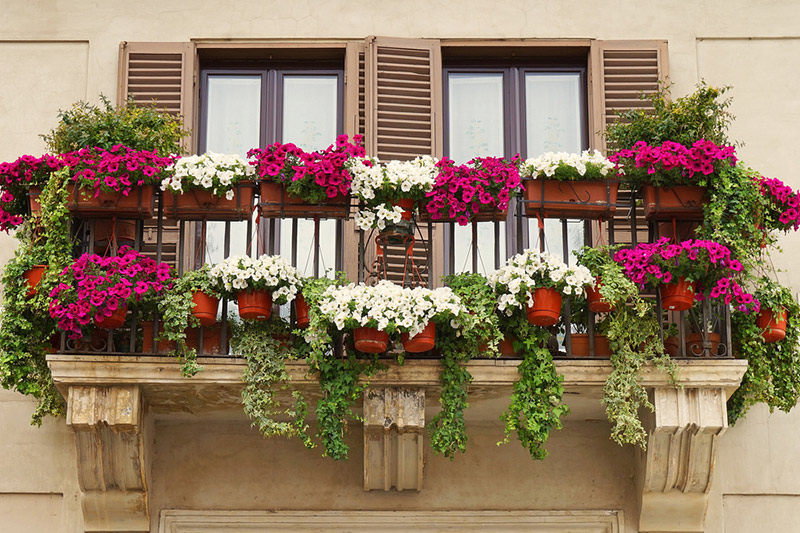 Front balcony design with home that is not without the energising sight of greenery with front design of balcony