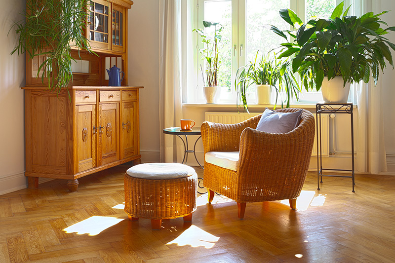 Latest Living room trends where you can interior design with natural material and colours