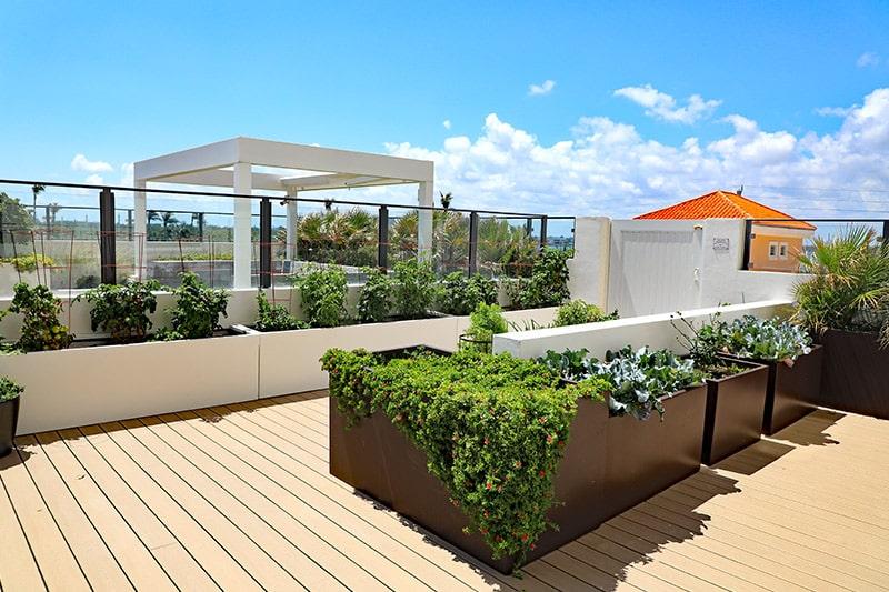 Outdoor terrace garden design with a flourishing vegetable garden