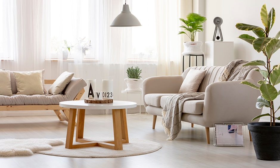 Living room corner decor with indoor plants for a natural ambiance
